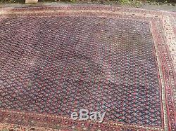 Very large antique vintage rug carpet wool 330x230cm royal mir sa-roug